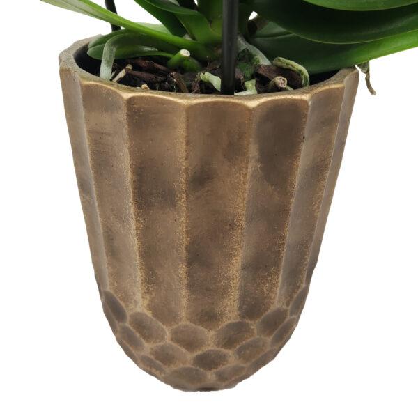 Orchidee Wit Fontano 3 takken met bloempot_bloempot