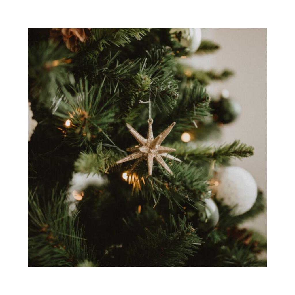 Welke kerstboom past het best bij jou?