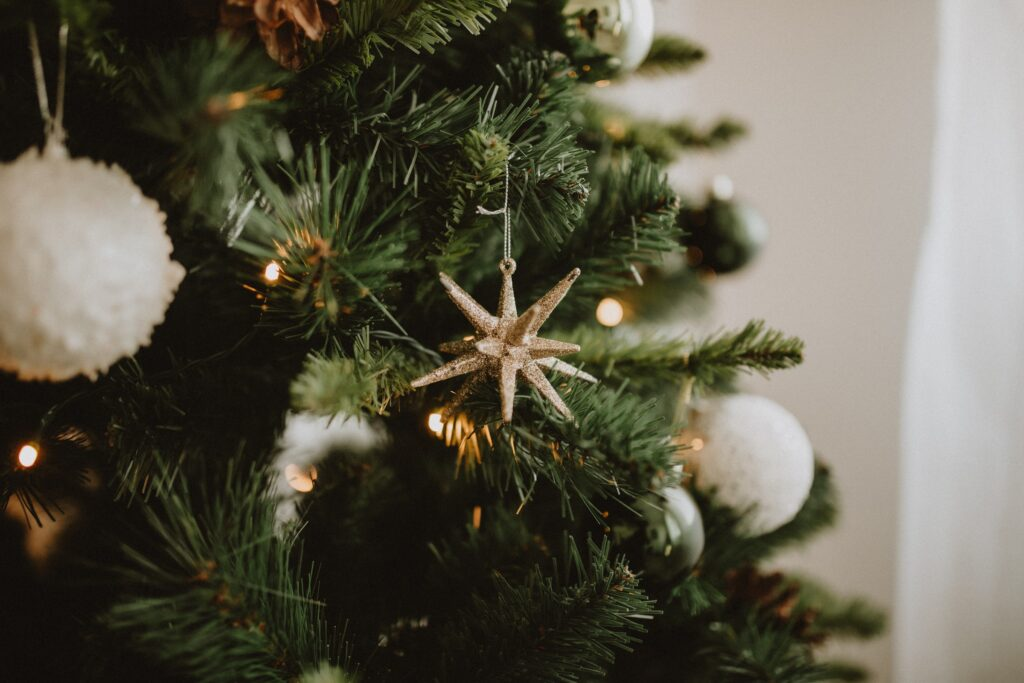 Kerstmis Crea-fleur
